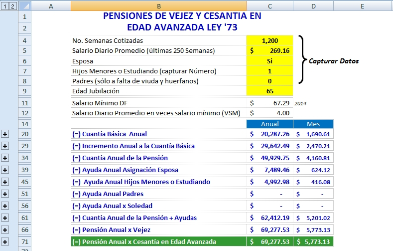 Ejemplo Calculadora Pension Regimen 73