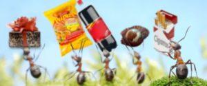¿Cómo convertir los gastos hormiga en fuentes de ahorro?
