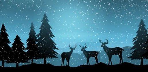 La odisea de Unelma, Tavoite y Erityinen – Cuento de Navidad 2019