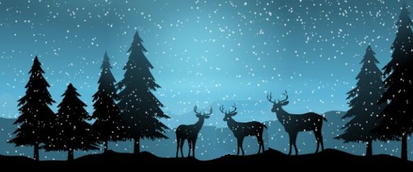 Cómo convertir tus sueños en metas - Cuento de Navidad 2019
